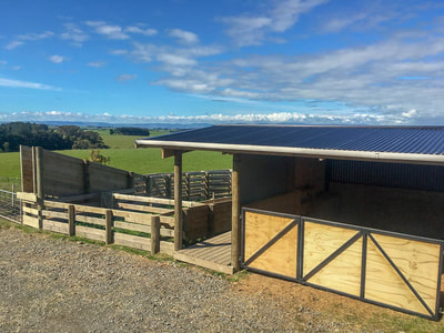 yards and farm shed by 3D constructions in Manawatu
